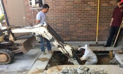 5 Common Signs of a Leaking Main Water Line (Part 1)